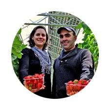 OPTIPLANT fraises avis utilisateur