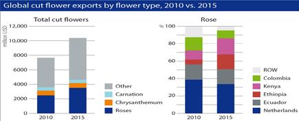 graphique exportations mondiales de roses coupees 2010 2015
