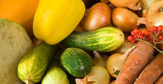 garden flowers vegetables fruits natural